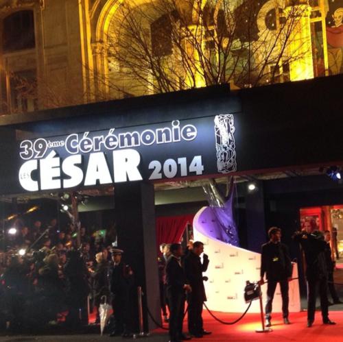 Cesar2014-Leblogreporter